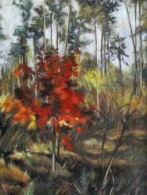 Obraz - 'Jesienny las' - Teresa Ulma