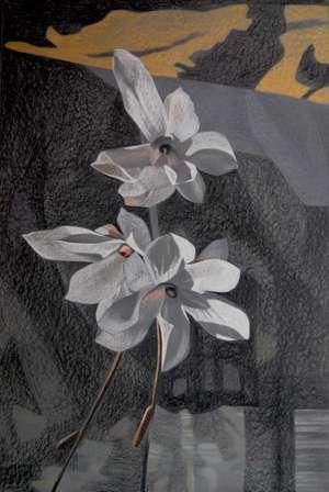 Rysunek - Bez tytułu - Teresa Ulma